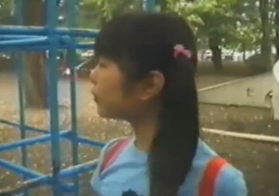 【個人撮影】これはアカンやつや…一人公園で遊ぶJS少女にチンポをねじ込んだロリコンの犯罪記録映像が流出!