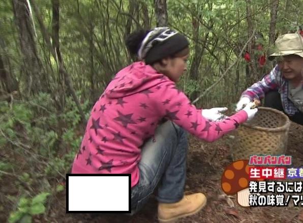 (放送事故)石川梨華が唯一引き起こした事件、『キノコ狩り生尻事件』ってアレ生放送だったんだよな。(写真あり)