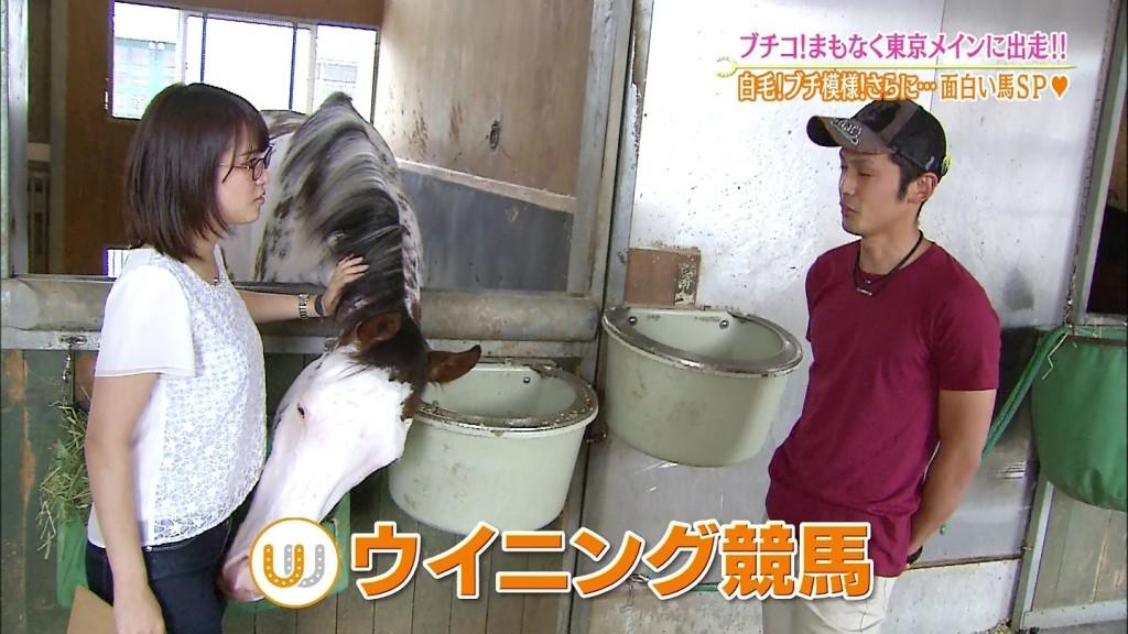 (※草※)テレ東鷲見玲奈アナ、馬にまんこ臭われて照れるwwwwwwwwww(写真あり)
