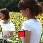 【放送事故】カトパンこと加藤綾子アナ(33歳)、伝説の『シャツの隙間ビーチク』がこちらwwww